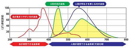 電球の波長.jpg