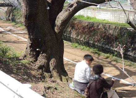 blogDSCN5735-30.jpg