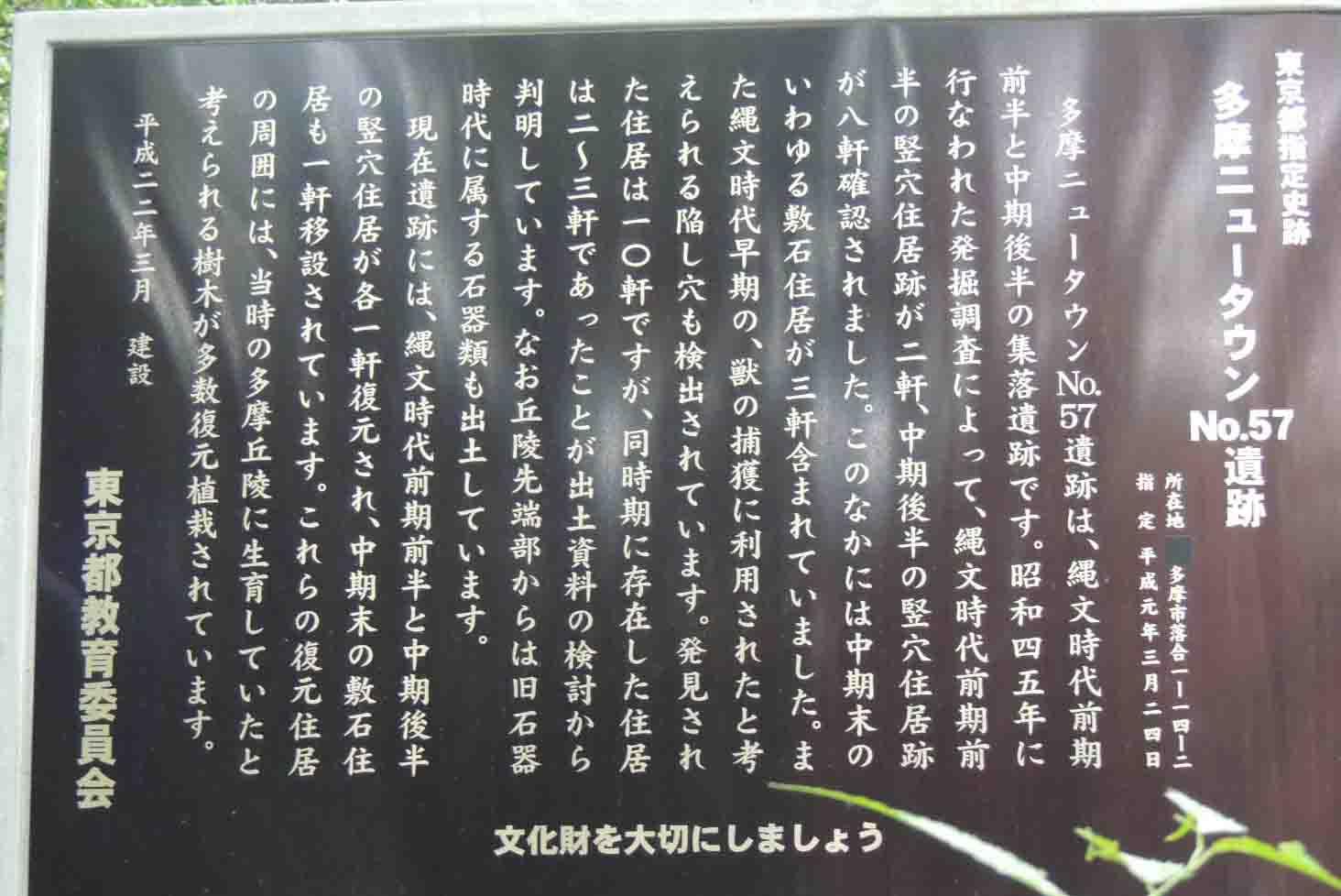 blogDSCN4269.jpg