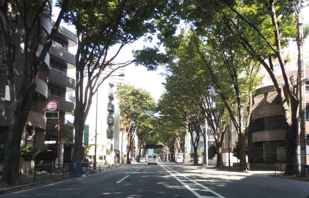 blogDSCN7320.jpg