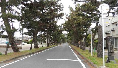 blogDSCN9473.jpg