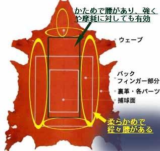 blog g_kawa[1].jpg